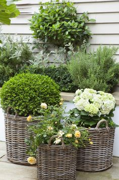 The hydrangeas look especially beautiful in gray rattan baskets.