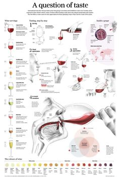 How drink and taste a glass of wine. All kind of glasses and the different grapes and wines.
