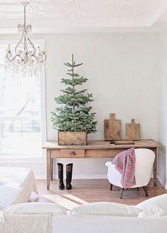 Un petit sapin de Noël installé dans une cagette