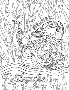 1442 Best Amazon 2 Images Adult Coloring Adult Colouring In