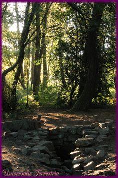 https://flic.kr/p/MoKku9 | Broceliande - J3 Fontaine de Barenton matin | Fontaine de Barenton, au petit matin juste por nous c'est magique...
