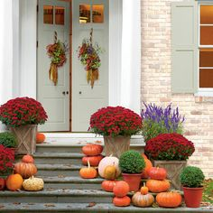 Decorative Mums and Pumpkins - Fall Container Gardening Ideas - Southern Living