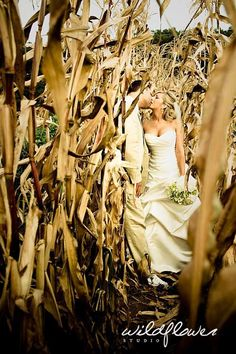 D always said he wants wedding pictures in a corn field because corn is where the money's at!