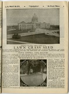 The Minnesota State Capital Lawn Was Seeded By L May Boasts Tagline Of A Photograph In 1909 Catalog Copies Many Catalogs From