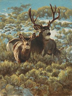 Greg Beecham | Masters of the American West 2014 | Autry National Center