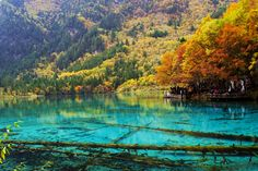 """""""Autumn in Jiuzhai, Sichuan, China"""" Nature, Landmarks and the Environment by Wang Jun, People's Republic of China"""