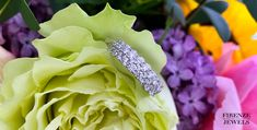 White Gold Wedding Bands, Wedding Rings For Women, Wedding Ring Bands, White Diamonds, Band Rings, Great Gifts, Rose, Color, Colour