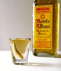 O que se bebe hein, México? - O Bar Virtual