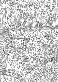 Fishes Colouring by Calypso