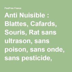 Anti Nuisible : Blattes, Cafards, Souris, Rat sans ultrason, sans poison, sans onde, sans pesticide, sans piège éliminez les sans les tuer !