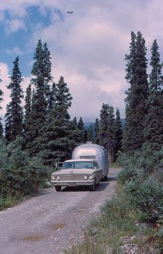 64-3-39    Savage River Campground - Mt. McKinley NP (not Denali back then!) (8/2/64)