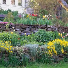 An abundance of spring bloomers turns towering terraces into a crazy quilt of cottage charm. Follow spring bulbs with summer- and fall-blooming perennials for extended bloom and season-long color.