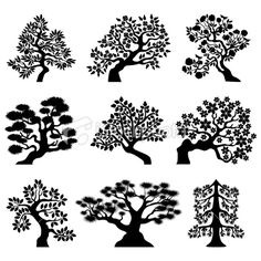 Bonsai trees Royalty Free Stock Vector Art Illustration