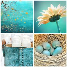 This is the color I'm dreaming of for my new bath. Love that daisy too!