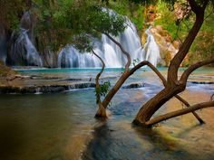 Havasu Creek Waterfall in Arizona. I want to visit Arizona, and I will be visiting this waterfall when I go!