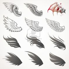 Vector Set Of Wings Royalty Free Cliparts, Vectors, And Stock Illustration. Image 9946701.