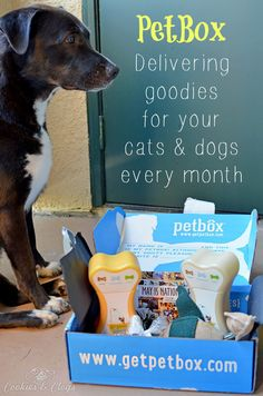 Monthly Subscription Boxes   Have you tried PetBox? It's a monthly box program for cats and dogs. See how you can treat your pet with pet accessories and at a reasonable price.