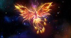 Phoenix Constellation | Saint seiya | Pinterest | Constellations ...