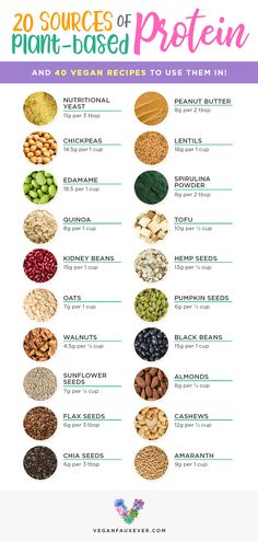Vegan protein sources are cheap, versatile, and delicious. But what's the best way to prepare them? If you've ever wondered how vegans get protein, check out this list of vegan protein sources. All plants have protein, but these are the best ones! Plus Sport Nutrition, Nutrition Sportive, Nutrition Plans, Nutrition Education, Diet And Nutrition, Proper Nutrition, Nutrition Guide, Complete Nutrition, Nutrition Store