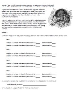 ecology biotic and abiotic factors worksheet Google