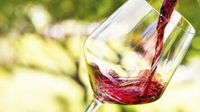 How can I make cheap wine taste better? Is cheap wine unhealthy? Do cheap wines age well? How can I improve the taste of my cheap wine? Semi Sweet Red Wine, Sweet Red Wines, Red Wine Cheese, Wine Leaves, Types Of Wine, Wine Brands, Cheap Wine, Cata, Pinot Noir