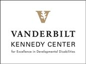 ADAPTIVE FUNCTIONING & COMMUNICATION ASSOCIATED WITH DIFFERENT LEVELS OF INTELLECTUAL AND DEVELOPMENTAL DISABILITIES (IDD)