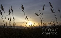 Sunrise in Newport, Rhode Island- Winter 2013