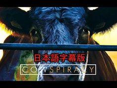 【動物の権利 Animal Rights】映画 COWSPIRACY : サステイナビリティ(持続可能性)の秘密 COWSPIRACY : The Sustainability Secret - 関西ヴィーガン&ベジタリアン Kansai Vegan&Vegetarian