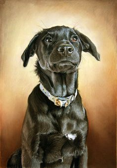 """Willy"" by Amy Little, contemporary London-based artist who paints shelter & rescue dogs"