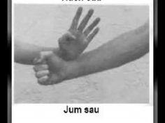 Wing Chun The 18 Hands of Wing Chun.flv