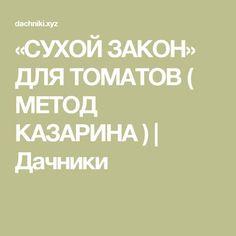 «СУХОЙ ЗАКОН» ДЛЯ ТОМАТОВ ( МЕТОД КАЗАРИНА ) | Дачники