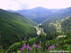 Wallpaper of Pasul Prislop carpathian mountains Romania most beautiful european landscapes for fans of Romania 35164730 Beautiful Places To Visit, Wonderful Places, Visit Romania, Carpathian Mountains, Famous Castles, Bucharest, Backpacking, Places To Go, Scenery