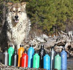 Best Reusable Water