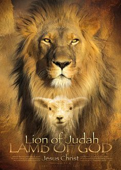 Christian wall art showing the Lion of Judah and the Lamb of God. This christian wall art helps you know Jesus Christ. Tribe Of Judah, Christian Posters, Christian Wall Art, Christian Paintings, La Salette, Lion Poster, Print Poster, Poster Poster, Lion And Lamb
