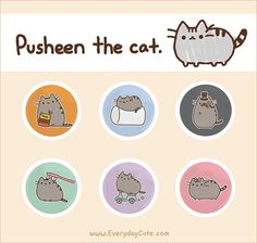 That's right.  Awesome Pusheen buttons.