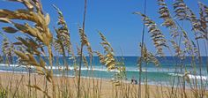 85º with a light ocean breeze...Outer Banks style #obx #outerbanks #beach #summer #beautiful #northcarolina #nc #visitnc #traveltuesday