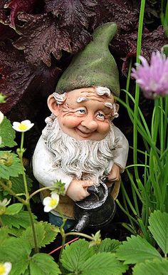 Garden gnome watering.