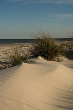 Jekyll Island, GA Beach  so excited to be here in a few weeks :)