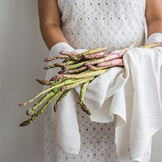 Working with asparagus Mini Desserts, Asparagus, Workshop, Fashion, Moda, Atelier, Fashion Styles, Fashion Illustrations, Asparagus Bacon