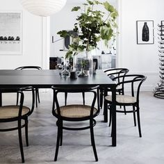 Bentwood Chairs in Modern Dining Rooms Dining Room Inspiration, Interior Design Inspiration, Interior Ideas, Modern Interior, Black And White Dining Room, Black White, Black Table, Black Chairs, White Chic