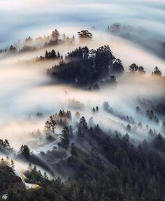 Marin County — Photography by @dubsonata