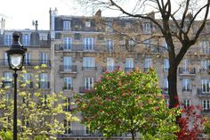 Square des Batignolles - Paris my old neighborhood