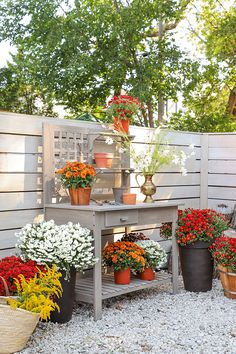 Barnhouse | Fall Potting Station