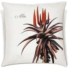 These soft, beautiful cushions celebrate the vibrant beauty of the crown of Africa's plant kingdom.