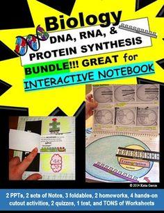 Dna homework assignment