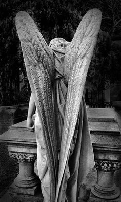 """"""">>>see, this was on a completely unrelated board and I can't see the beauty at all.all I can think of is weeping angels! Cemetery Angels, Cemetery Statues, Cemetery Art, Cemetery Monuments, Angels Among Us, Angels And Demons, Statue Ange, Art Beauté, Op Art"""