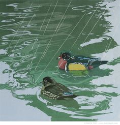 """Shower with a Friend (wood duck)"" Reduction linocut by Sherrie York. http://www.sherrieyork.com"