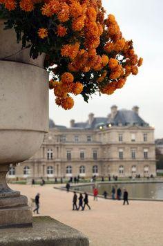 Paris, le Jardin du Luxembourg.