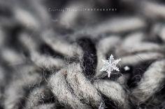 Macro snowflake - Courtney Thompson Photography