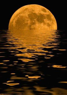 The moon is drowning Moon Photos, Moon Pictures, Nature Pictures, Mystic Moon, Moon Dance, Shoot The Moon, Howl At The Moon, Moon Magic, Moon Lovers